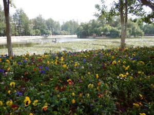 Des français à Kunming.